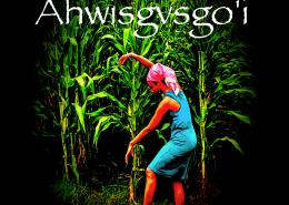 ahwisgvsgo'i